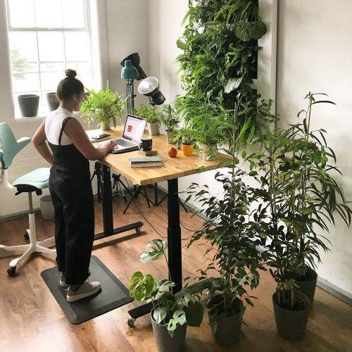 All Standing Desks