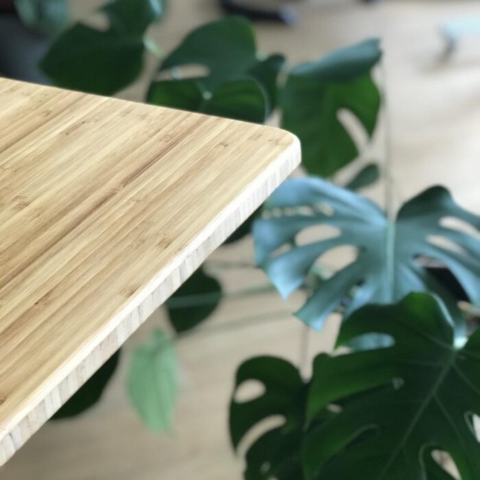 Sisu Bamboo Standing Desk